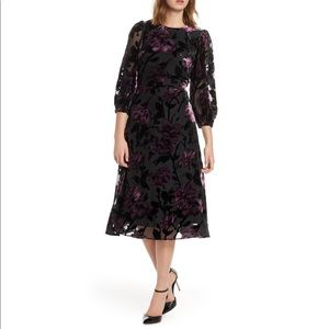 ELIZA J | sz 0P NWT Balloon sleeve velvet dress